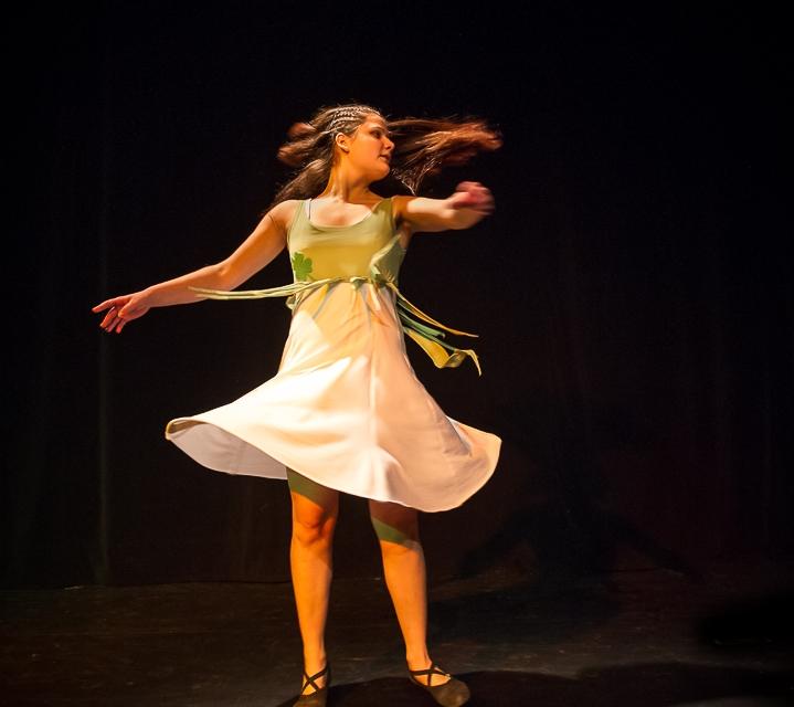 Tanec 2014